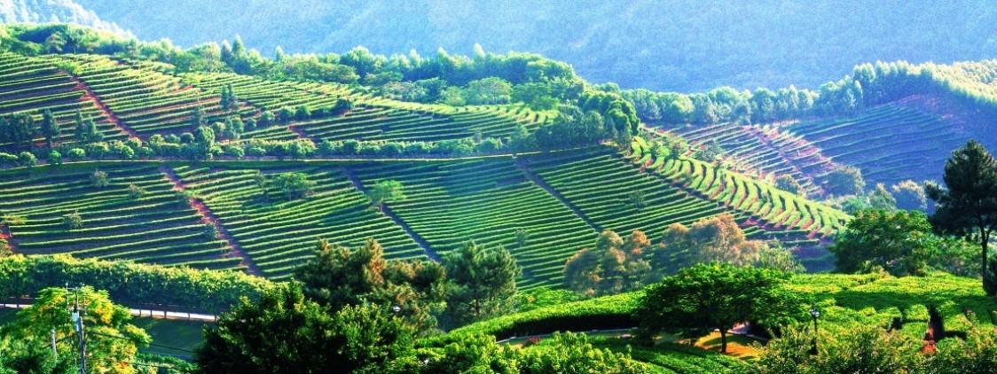 Провинция Юньнань